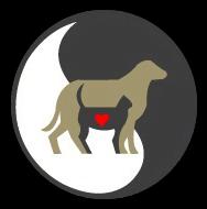 Shiloh Animal Hospital